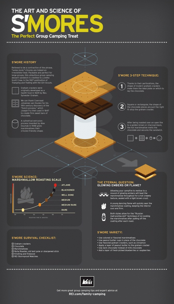 the art and science of smores infographic